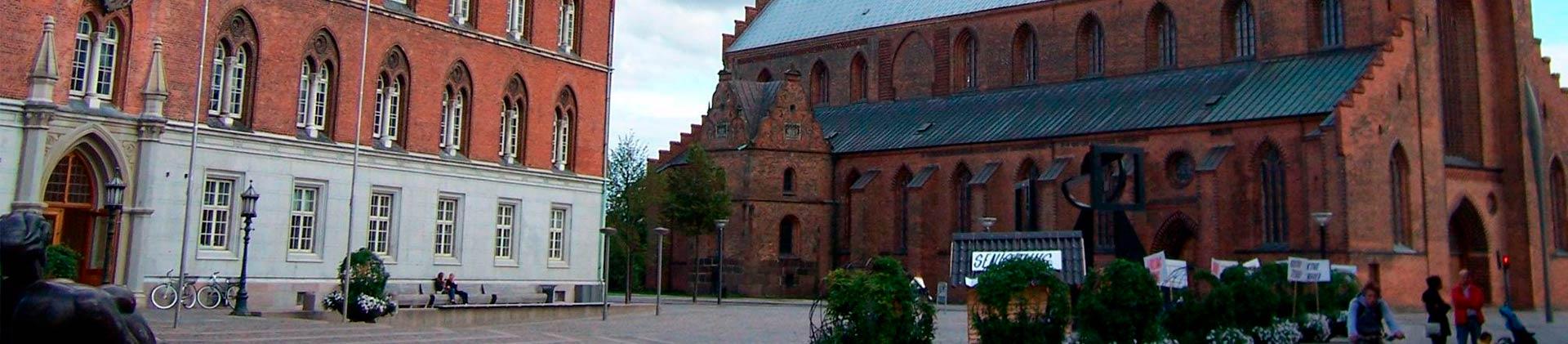 SEO Odense